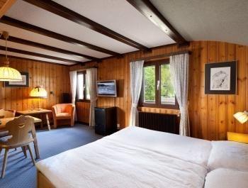 Chalet-Hotel Aux Mille Etoiles – Standaard  Tweepersoonskamer